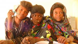 Rapport de visite au Niger Novembre 2015 – Résumé